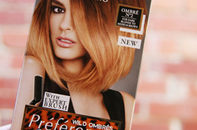 L'Oreal & Beautyholics Anonymous: A Wild Ombré Evening Just For You!