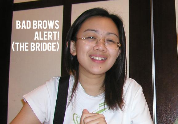Bridge Brows
